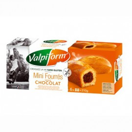 VALPIFORM - Mini-cake fourré chocolat X6 (210 g) lppr 2.54e